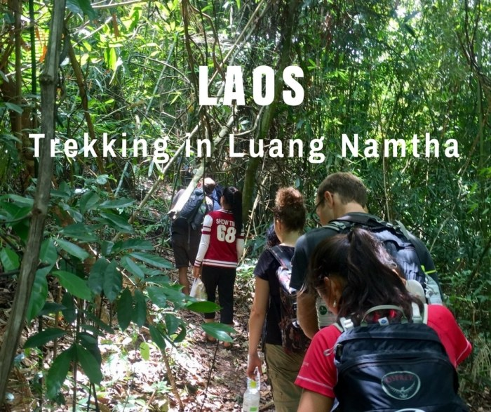 Trekking in Luang Namtha National Protected Area, Laos
