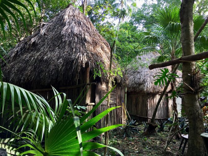 Wood Carvers Compound on Mayan Experience Tour with Layla Guesthouse