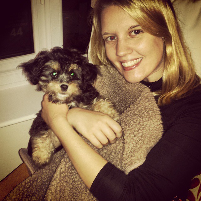 Best buds #dog #puppy #cavapoo #cavalier