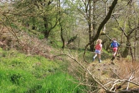 Kids exploring the bog on site