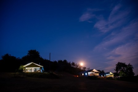All three sarfari tents in the glamping field at night with the moon rising