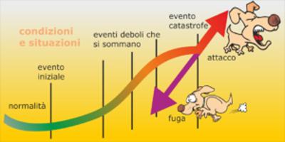 Teoria delle catastrofi