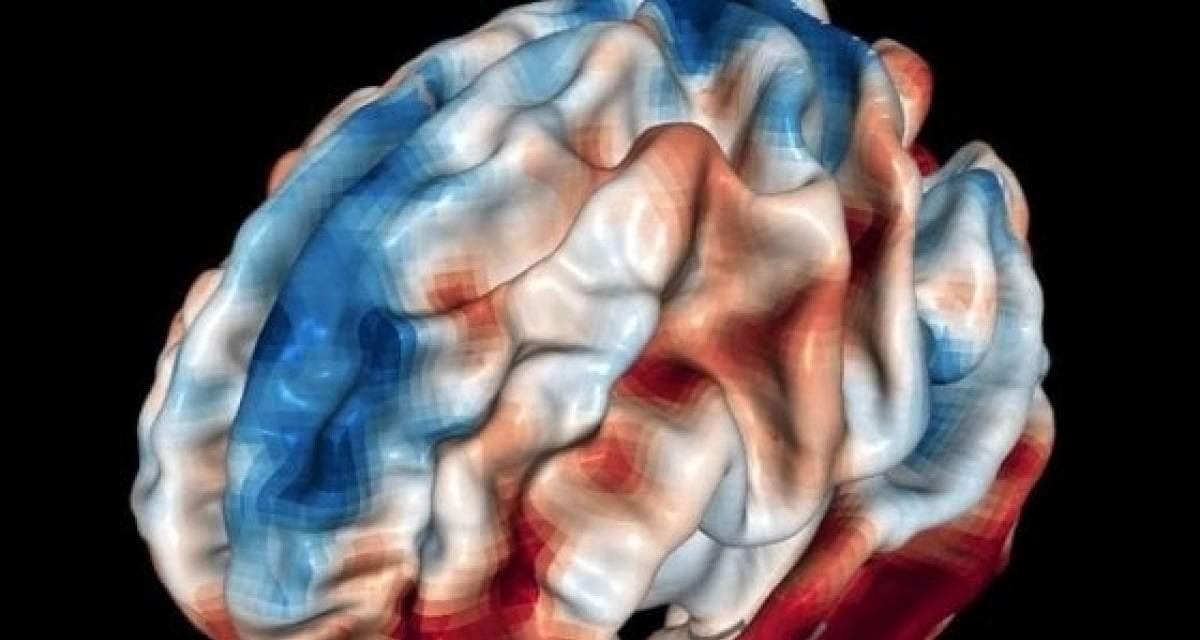 Fast – Optic-neural transmission –