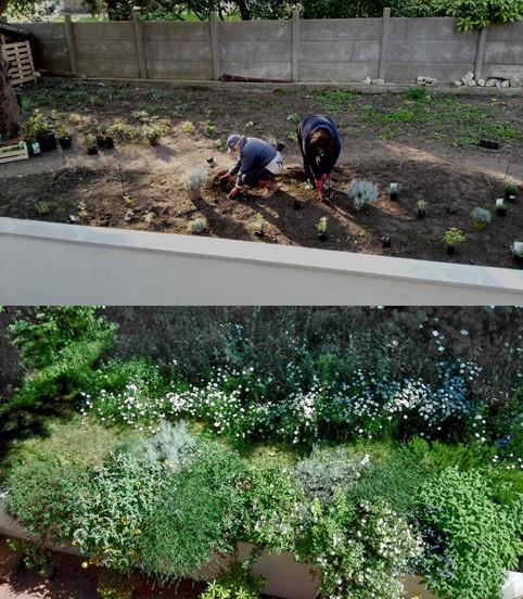 Il giardino come progetto dinamico
