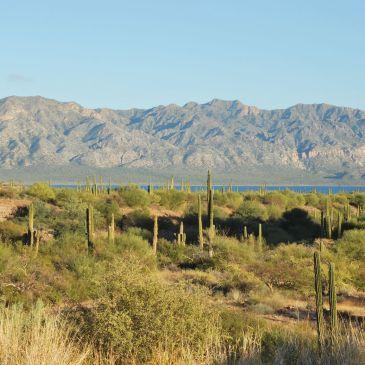 J96 à 110 : Baja California