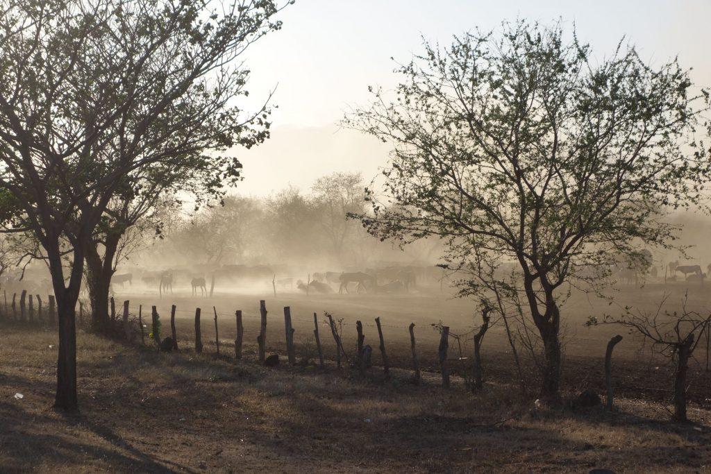 Nicaragua Sand Storm