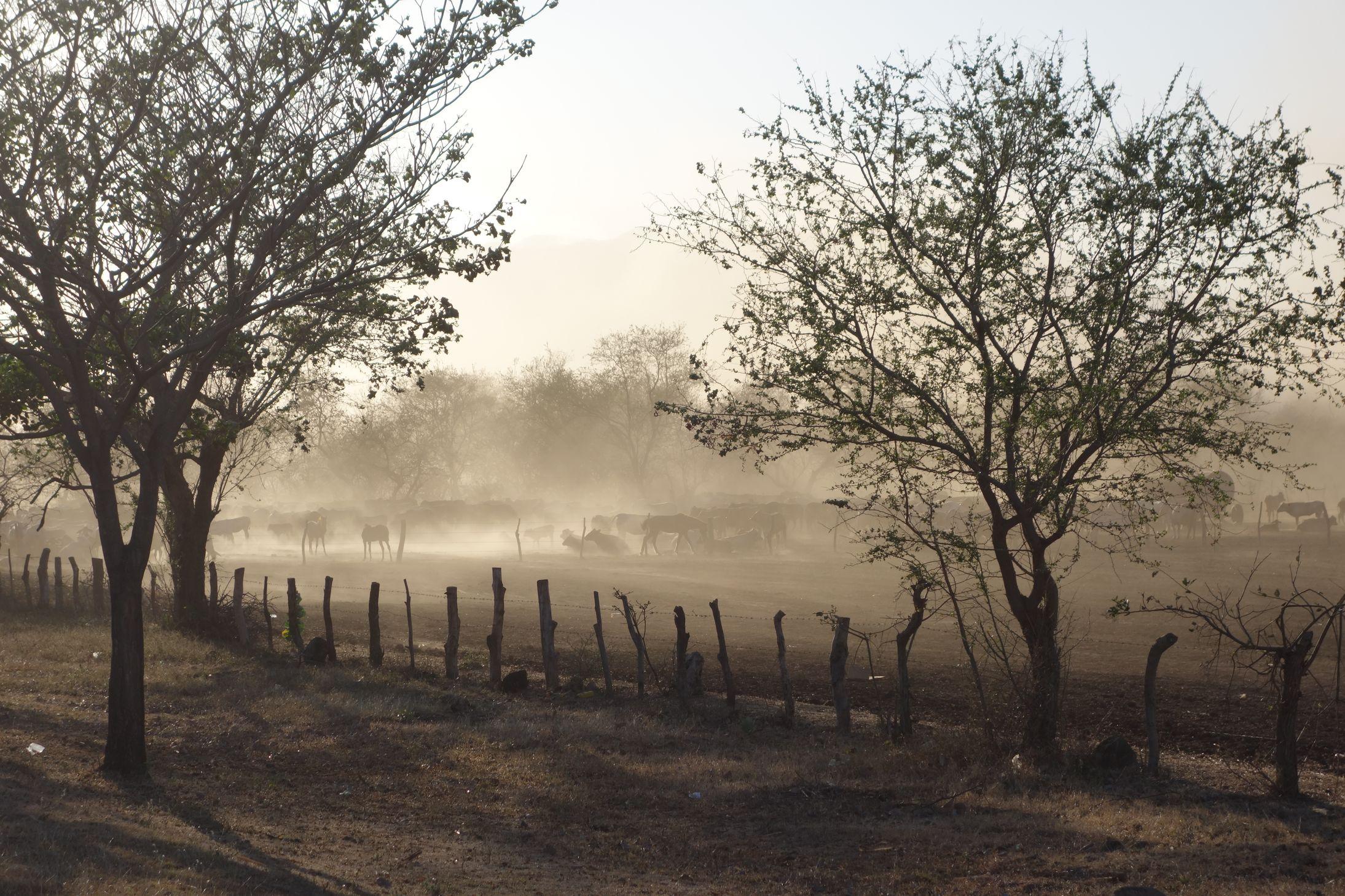 J166 à 171 : De Somoto au Cerro Negro, le Nord du Nicaragua