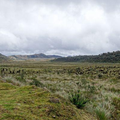 Tierradentro (8)