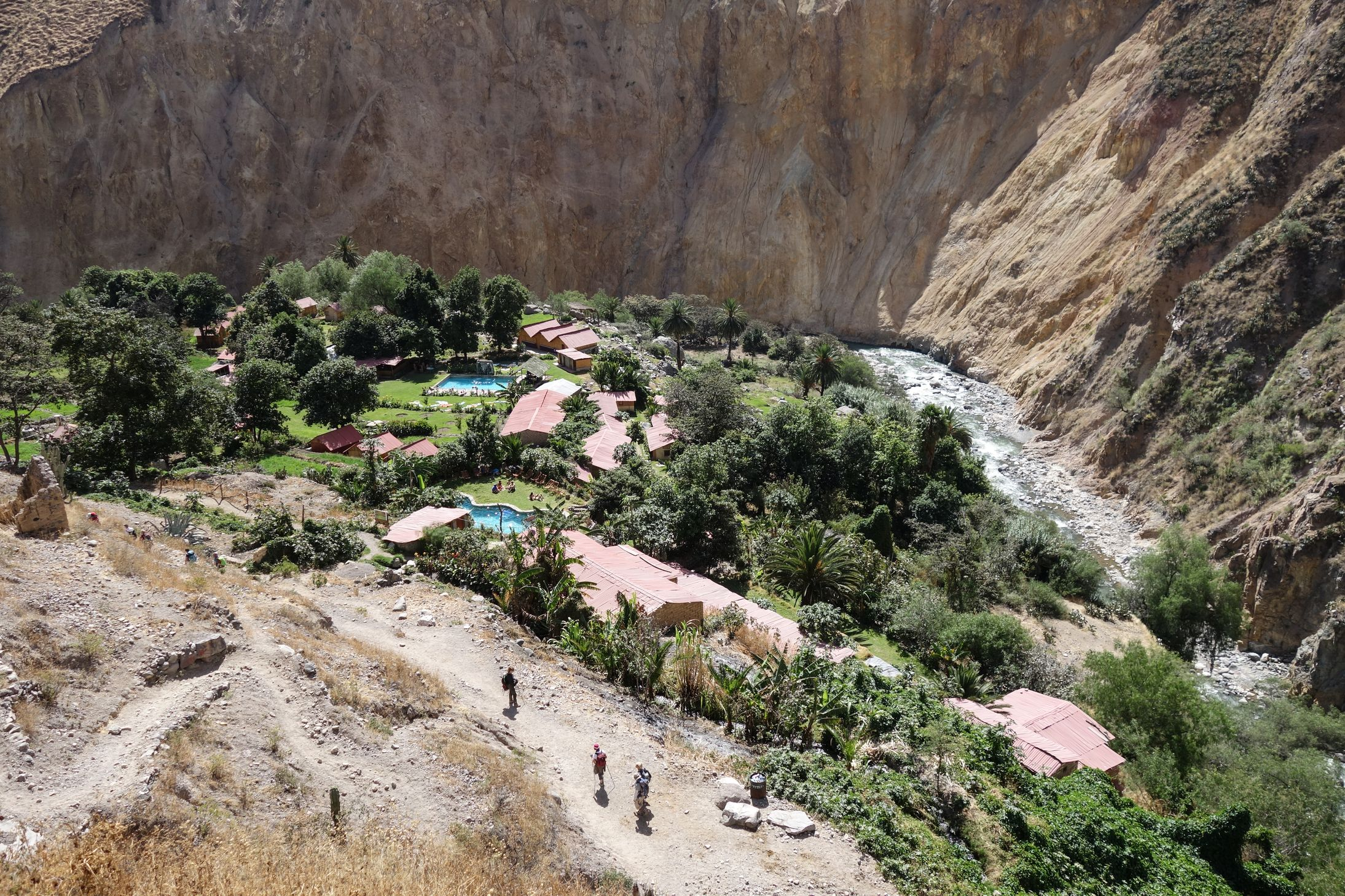 Canyon_Colca_Oasis