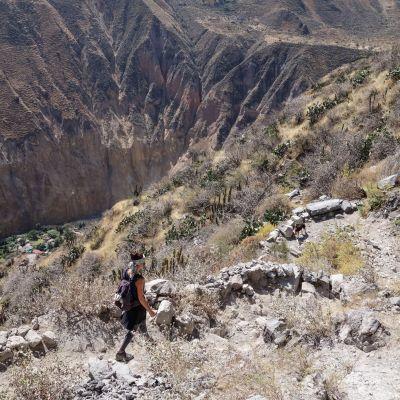 Canyon_Colca_Rando
