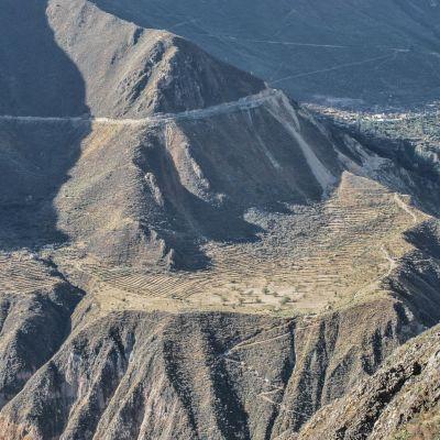 Colca_Canyon