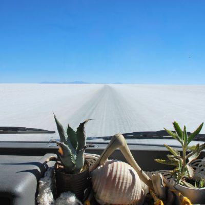 Bolivie_Uyuni_Piste Salar