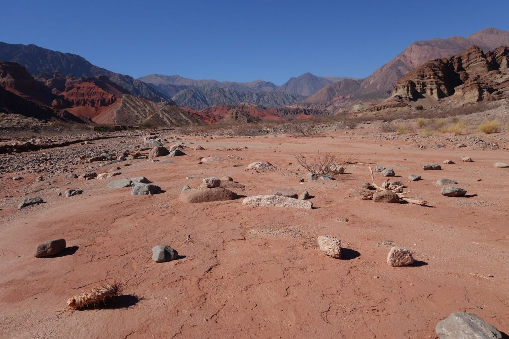 Nord_Argentine_desert