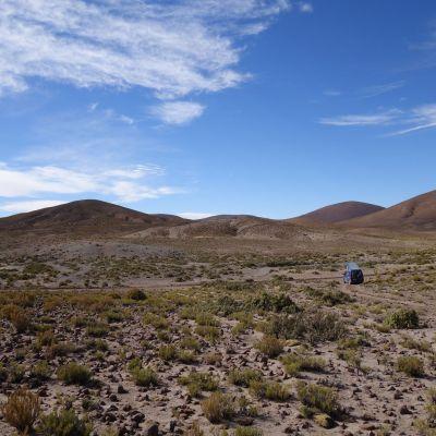 Bolivie_Pampa