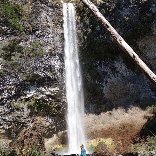 Cascade Nahuel Huapi