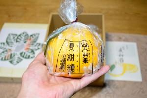老松 夏柑糖 正面からの写真