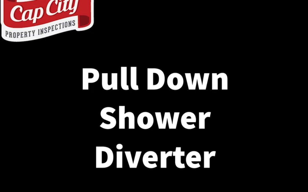 Pull Down Shower Diverter