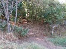 Signpost at start of Myburgh's Waterfall Ravine