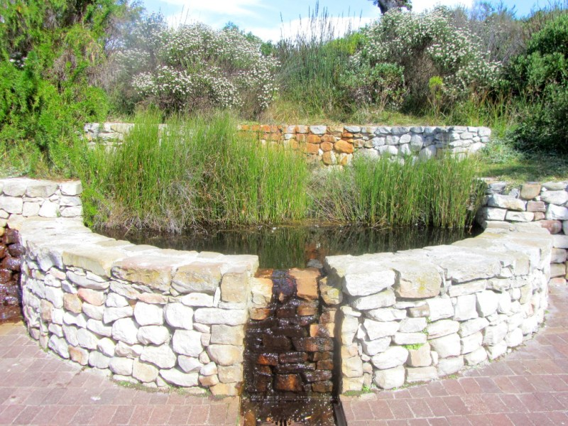 Buffelsfontein Spring, Cape Point Nature Reserve