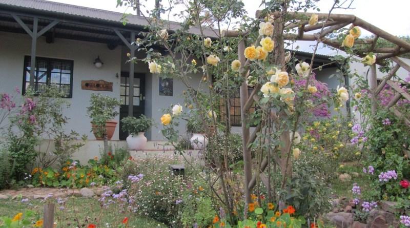 Greyton garden