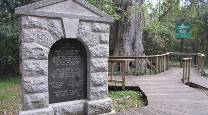 The Dalene Matthee Memorial