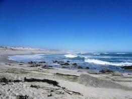 16 Mile Beach, West Coast National Park