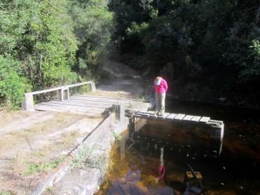 Harkerville Dam, Perdekloof Trail