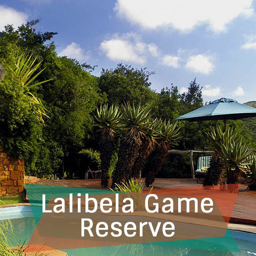 Lalibela Game Reserve Featured Image 500x500