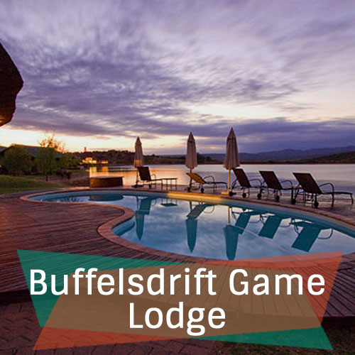 Buffelsdrift Game Lodge Feature Image