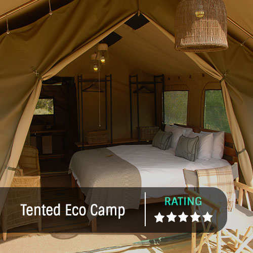 Tented Eco Camp Feature Image