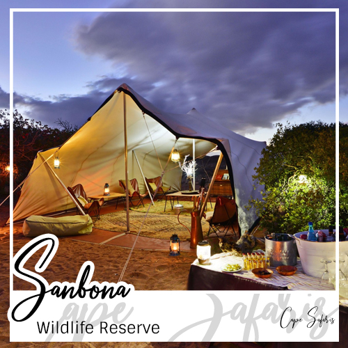 Sanbona Wildlife Reserve Fetured Image 2019