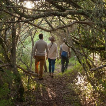 Grootbos Villa Forest Walk
