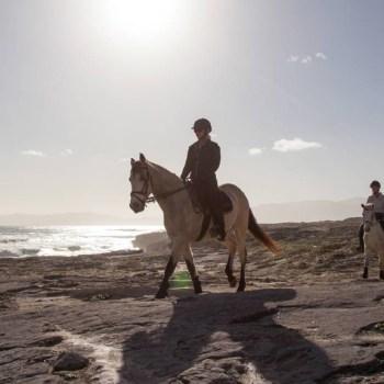 Grootbos Villa Horse Riding