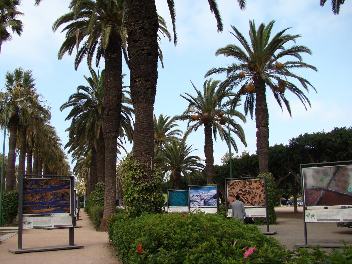 Parque de la Ligue Arabe Casablanca // Morocco