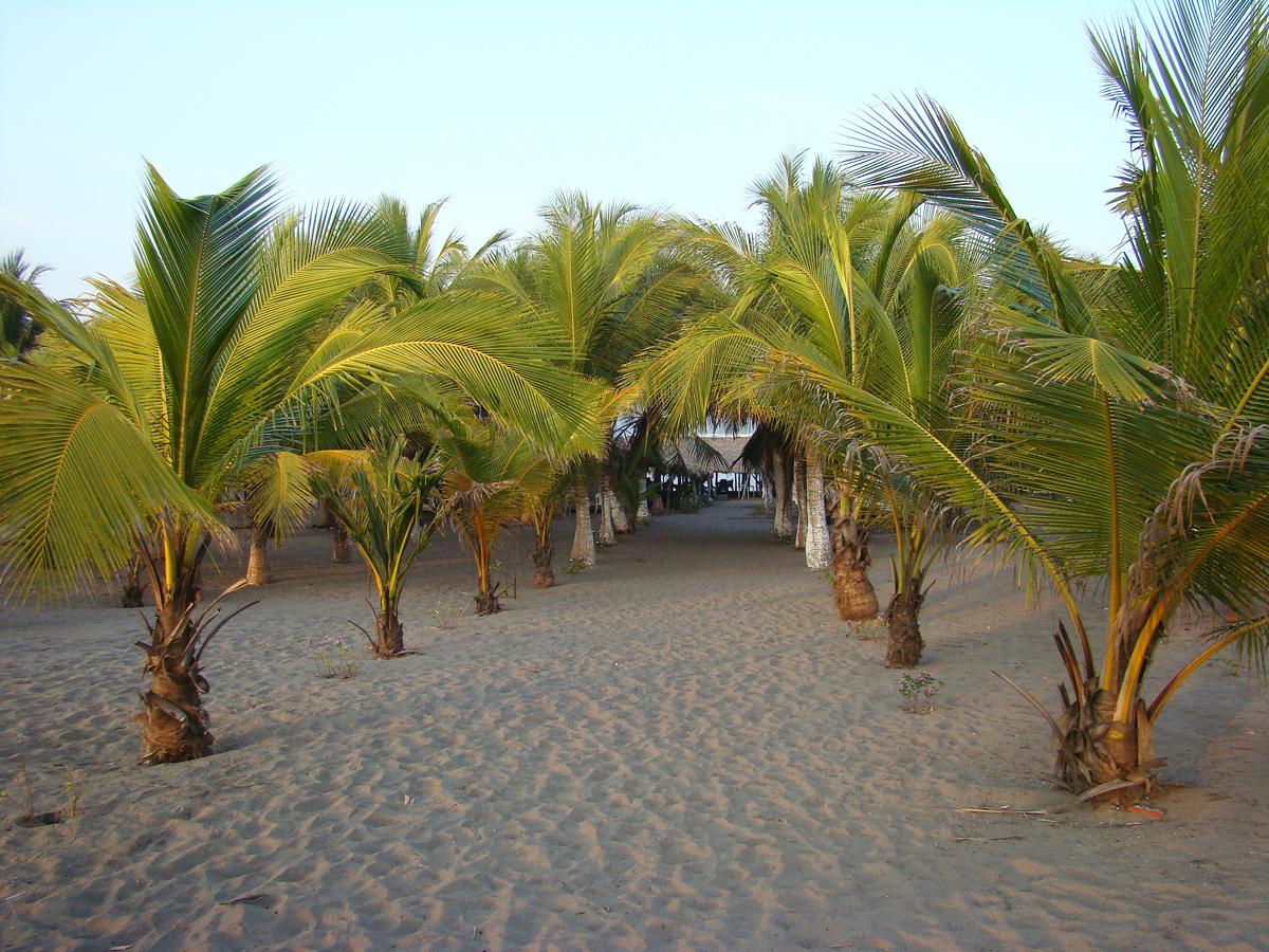 Boca del Cielo beach // Mexico