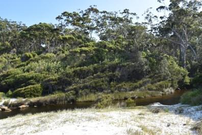 Beach New South Wales Australia