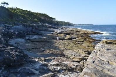 Rocky beach New South Wales Australia