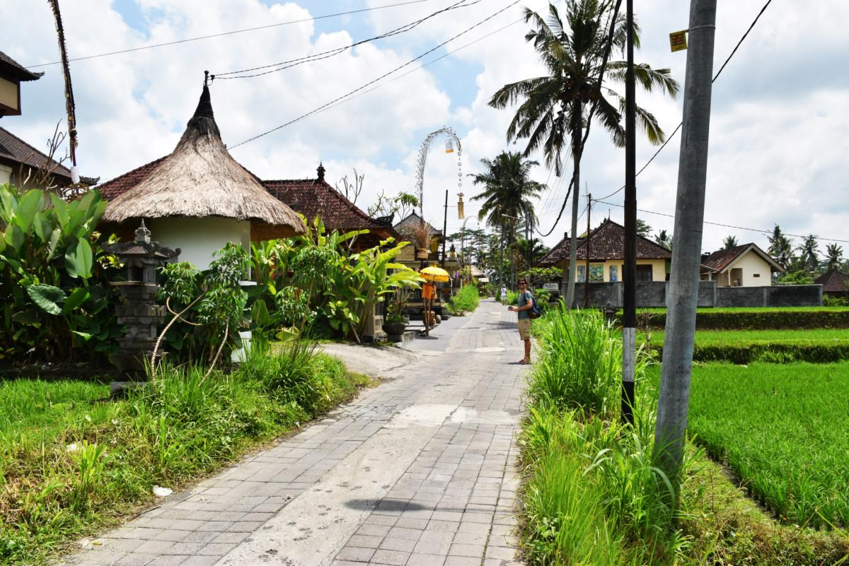Indonesia Campuhan Ridge Walk Bali
