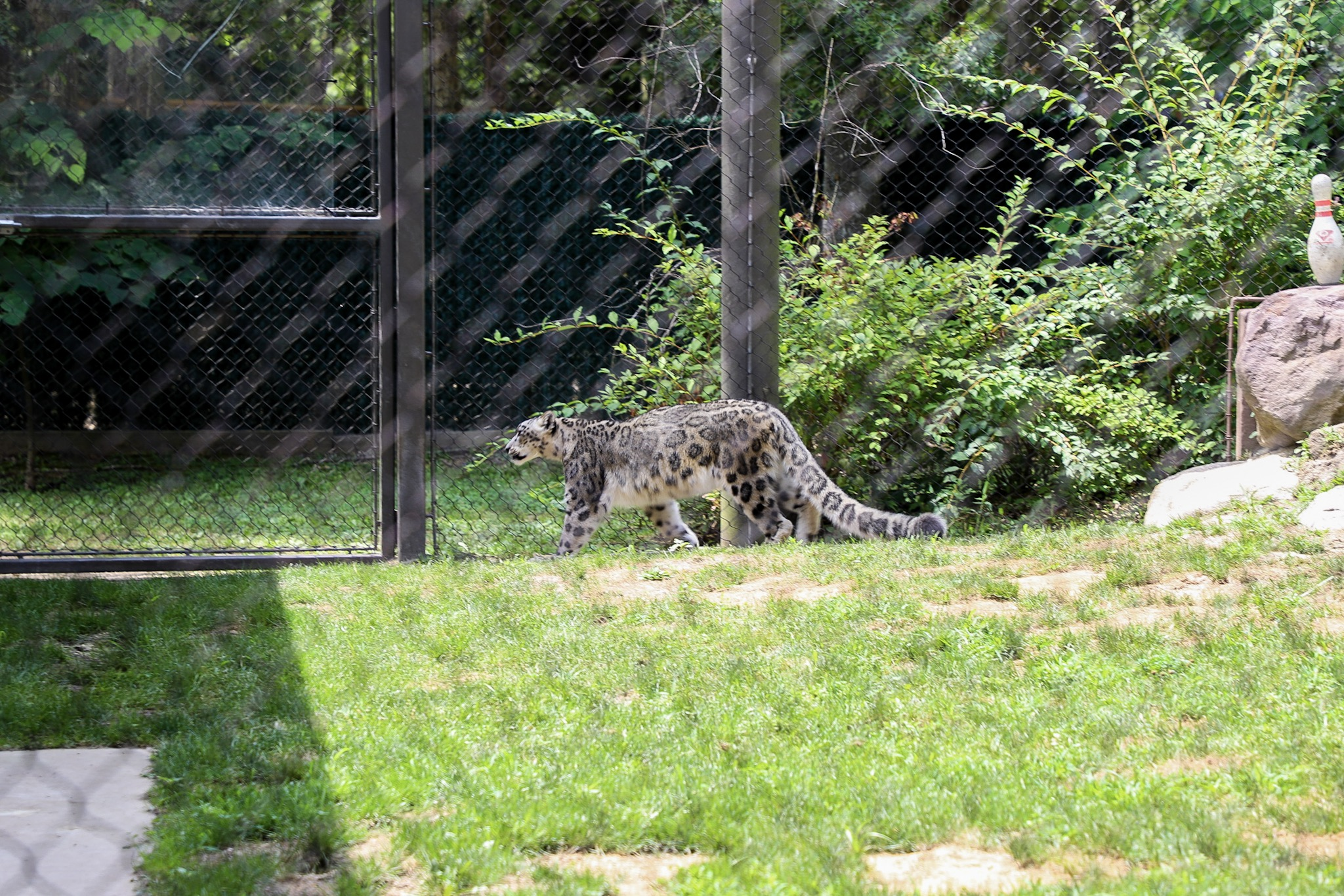 A Trip to the Cape May County Park & Zoo | CapeMay com Blog