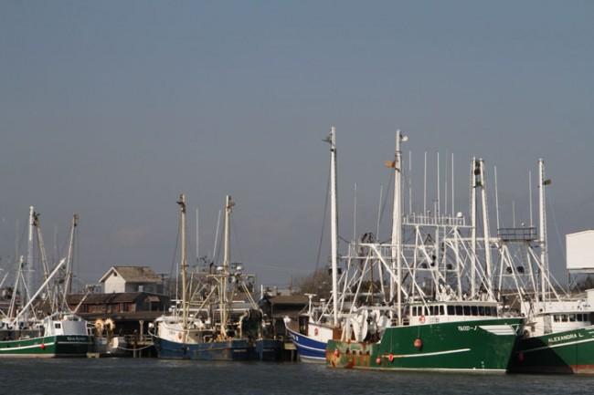 Alongside the Wharf