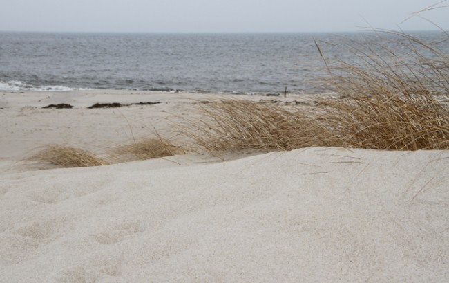 Dunes at the Point