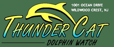 Thunder Cat Dolphin Watch logo
