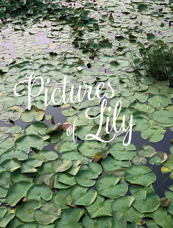 Lake Lily in Cape May Point New Jersey
