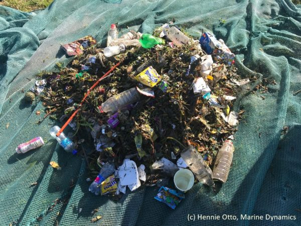 66415742 10157359477072520 3168072764925935616 o 600x450 - First litter-trapping stormwater net launches in Gansbaai