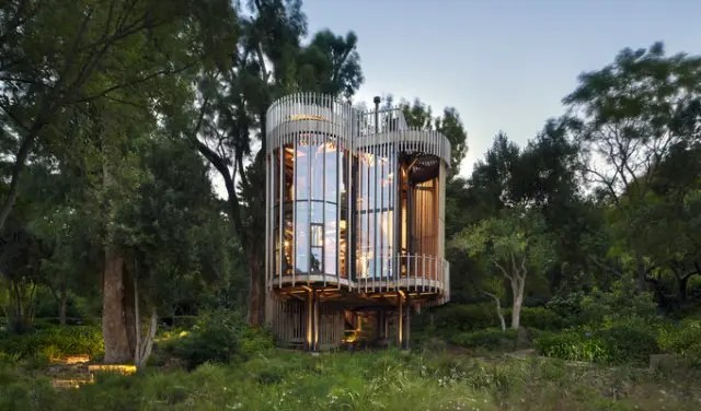 The World S Most Beautiful Treehouse In Cape Town South Africa