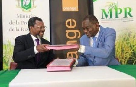 Orange Côte d'Ivoire signe un partenariat avec le Ministère de la Promotion de la Riziculture pour promouvoir l'E-agriculture