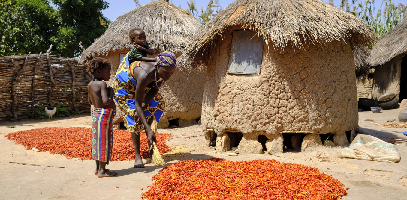Poor rural infrastructure holds back food production by small Nigerian farmers
