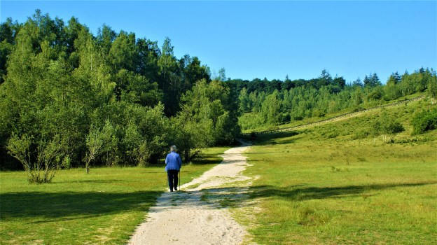 hiking-5333491_1920