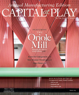 Capital at Play January cover
