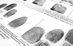 Fingerprint Certificate Police Records Checks